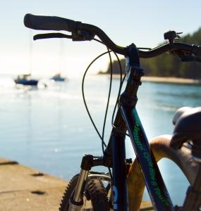 Wheelie Fantastic Bike Hire on Mapua Wharf